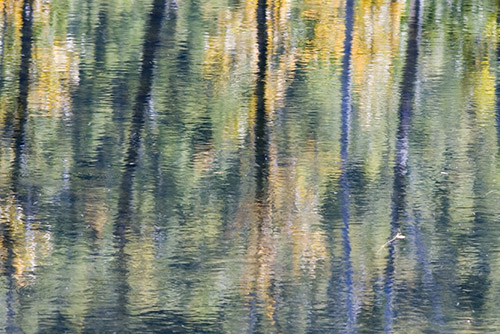 """Brother, can you spare a Monet?"" What Do You Need to Know About Lending Art?"